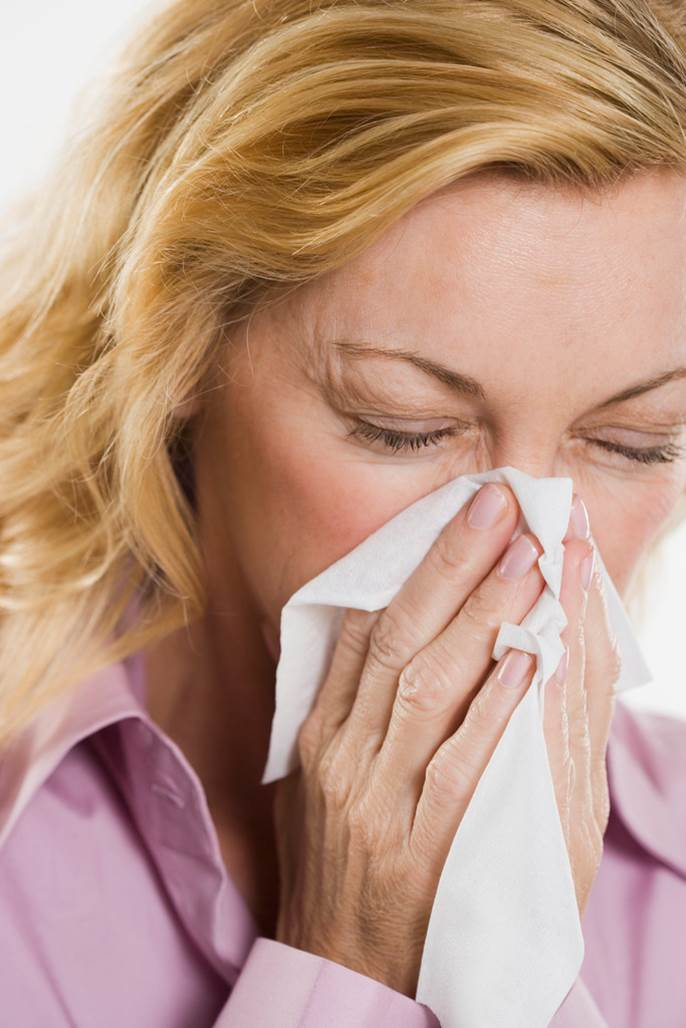 New fact sheets on Otitis Media, the Common Cold and Sinusitis